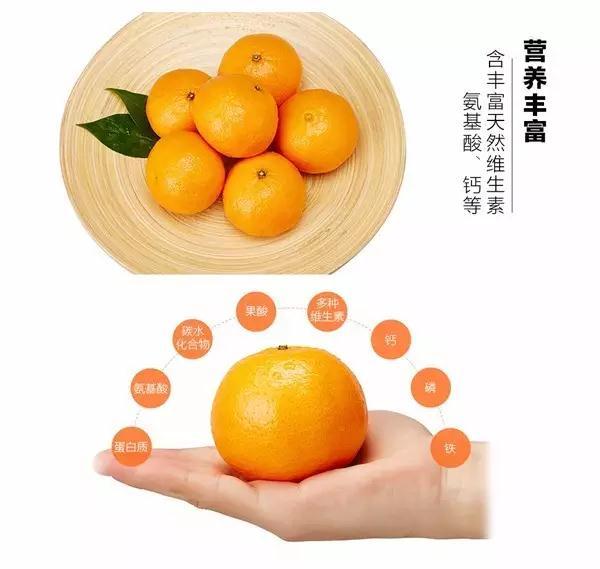 水果 植物 600_569
